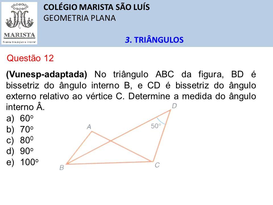 COLÉGIO MARISTA SÃO LUÍS GEOMETRIA PLANA 3. TRIÂNGULOS Questão 12 (Vunesp-adaptada) No triângulo ABC da figura, BD é bissetriz do ângulo interno B, e