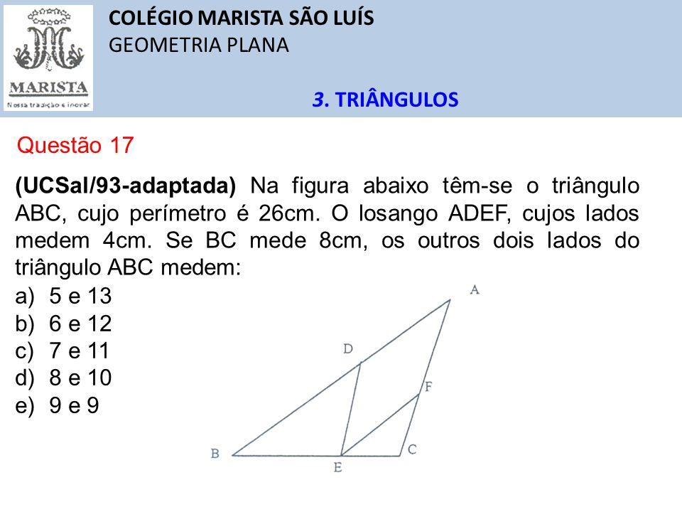 COLÉGIO MARISTA SÃO LUÍS GEOMETRIA PLANA 3. TRIÂNGULOS Questão 17 (UCSal/93-adaptada) Na figura abaixo têm-se o triângulo ABC, cujo perímetro é 26cm.