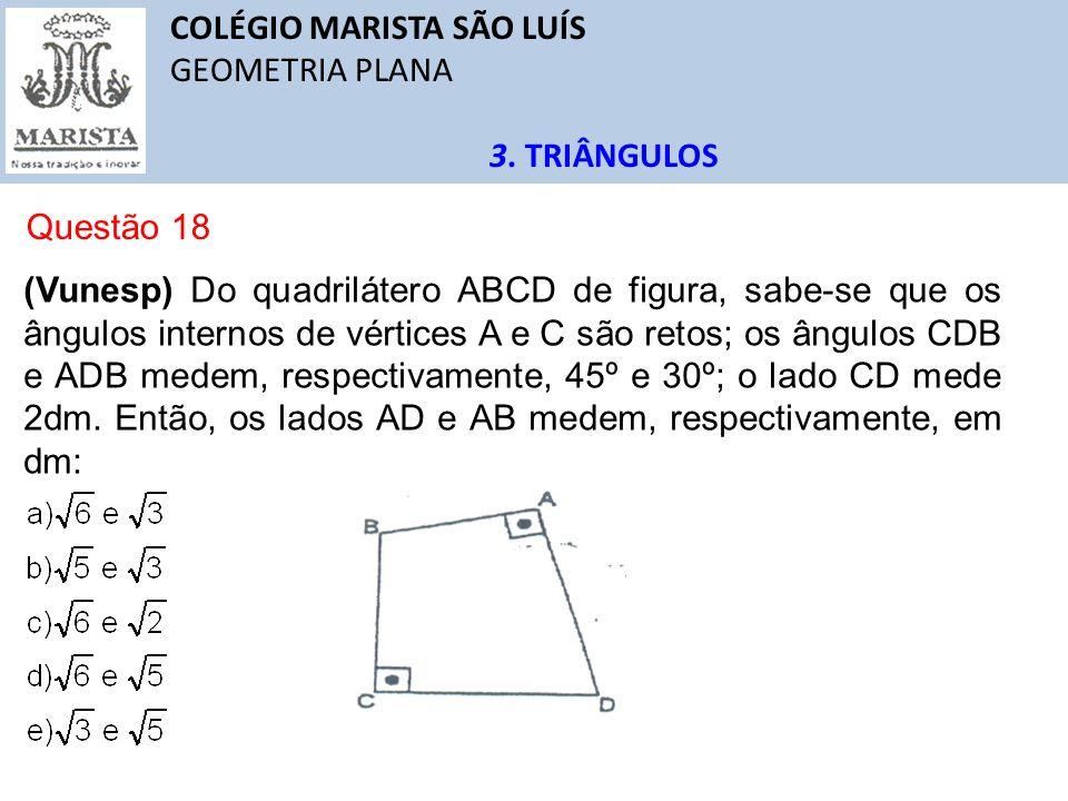 COLÉGIO MARISTA SÃO LUÍS GEOMETRIA PLANA 3. TRIÂNGULOS Questão 18 (Vunesp) Do quadrilátero ABCD de figura, sabe-se que os ângulos internos de vértices