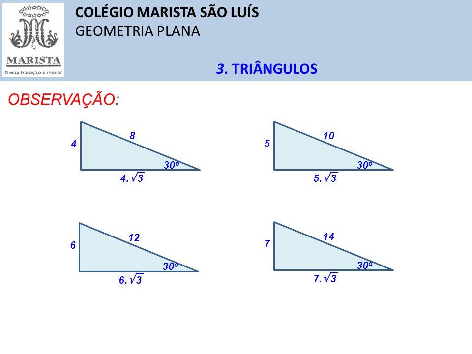 COLÉGIO MARISTA SÃO LUÍS GEOMETRIA PLANA 3.TRIÂNGULOS OBSERVAÇÃO: 30 o 4 8 4.