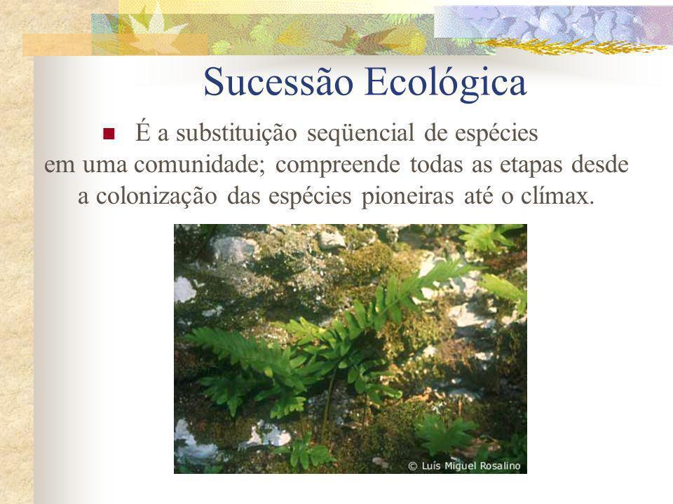 Sucessão Ecológica É a substituição seqüencial de espécies em uma comunidade; compreende todas as etapas desde a colonização das espécies pioneiras at