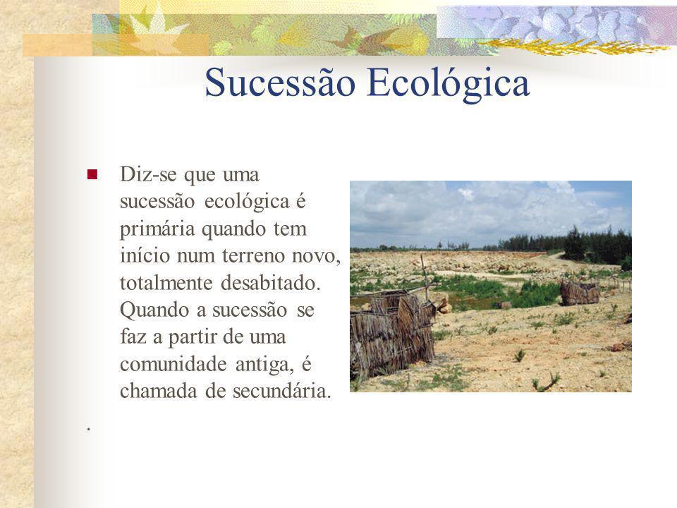 Sucessão Ecológica Diz-se que uma sucessão ecológica é primária quando tem início num terreno novo, totalmente desabitado. Quando a sucessão se faz a