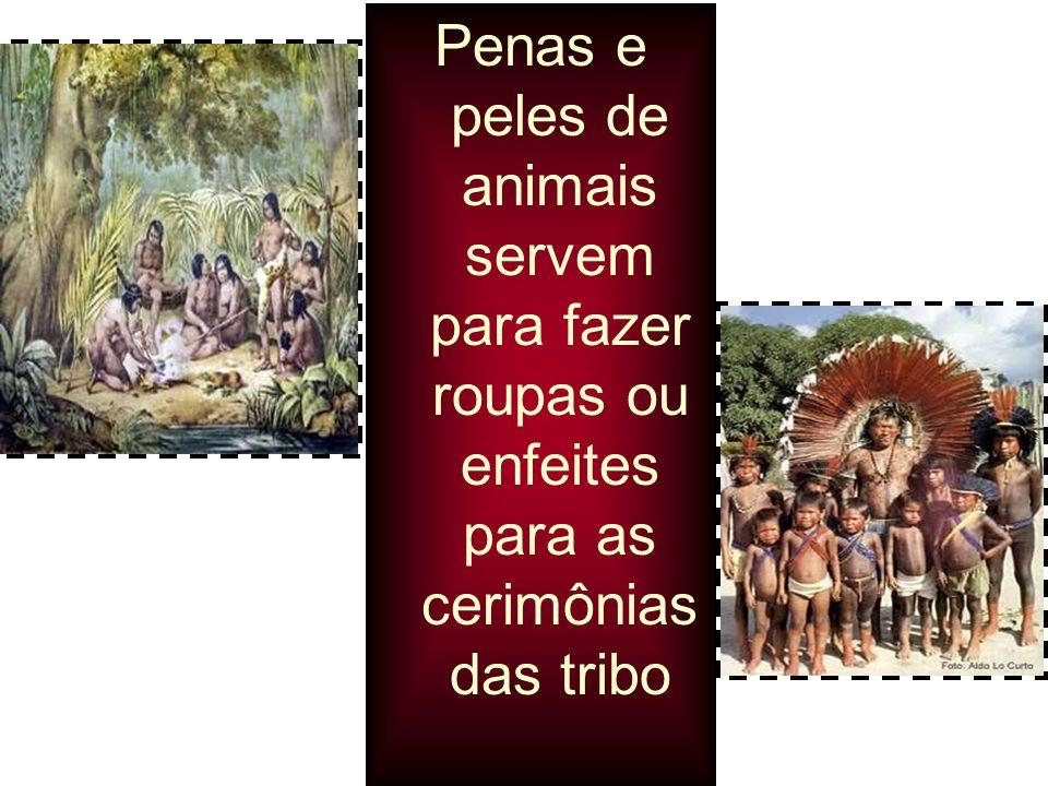 Penas e peles de animais servem para fazer roupas ou enfeites para as cerimônias das tribo