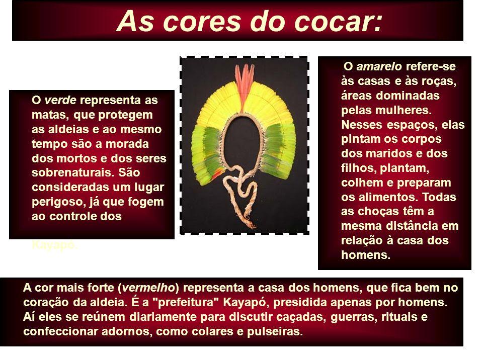 Conclusão Arte está presente em cada momento de vida dos povos indígenas no mundo todo.