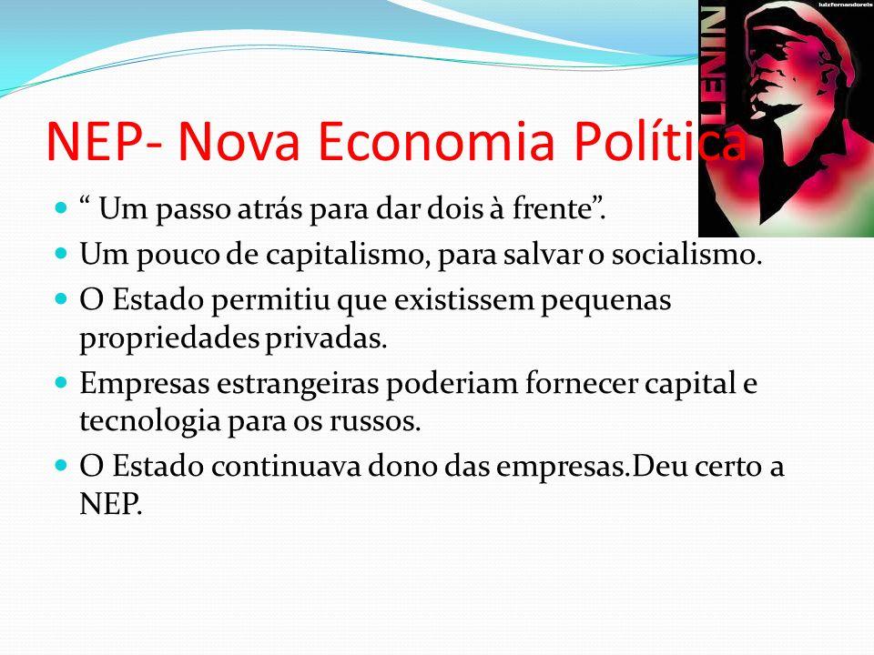 NEP- Nova Economia Política Um passo atrás para dar dois à frente.