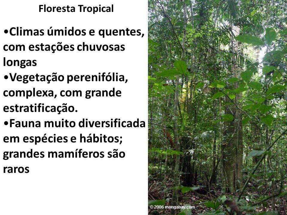 Floresta Tropical Climas úmidos e quentes, com estações chuvosas longas Vegetação perenifólia, complexa, com grande estratificação. Fauna muito divers