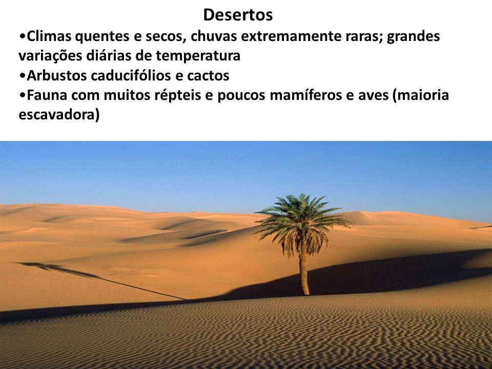 Desertos Climas quentes e secos, chuvas extremamente raras; grandes variações diárias de temperatura Arbustos caducifólios e cactos Fauna com muitos r