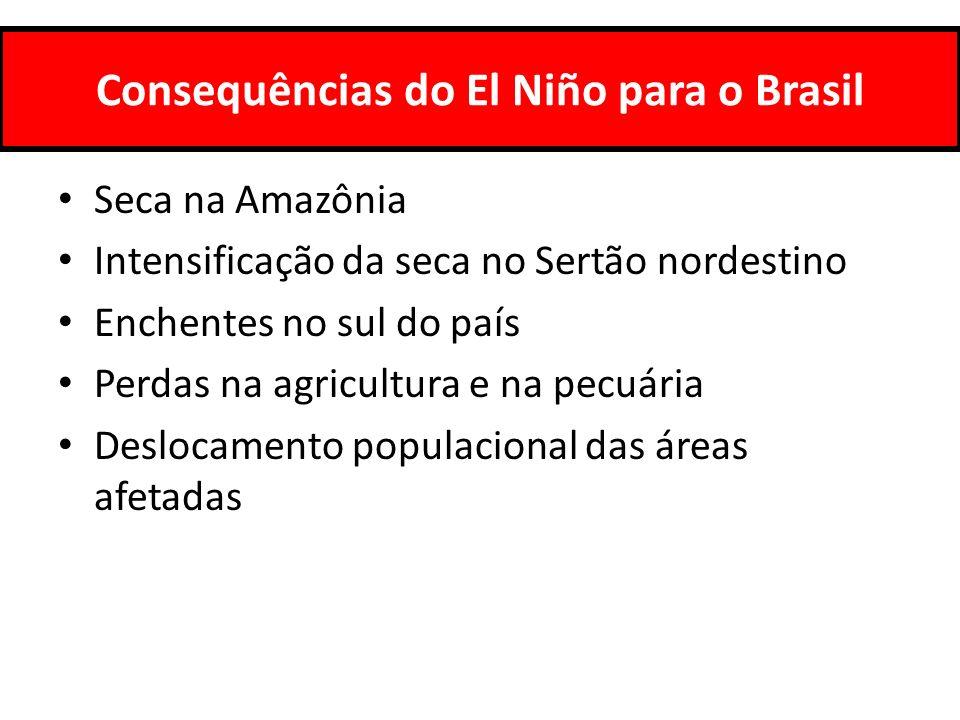 Consequências do El Niño para o Brasil Seca na Amazônia Intensificação da seca no Sertão nordestino Enchentes no sul do país Perdas na agricultura e n