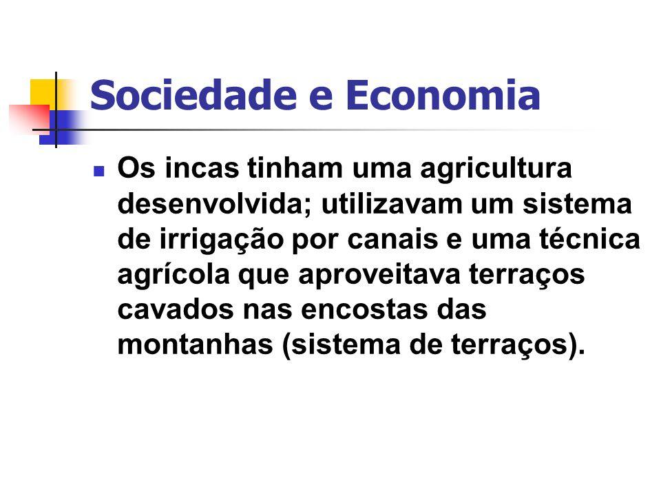 Sociedade e Economia Os incas tinham uma agricultura desenvolvida; utilizavam um sistema de irrigação por canais e uma técnica agrícola que aproveitav