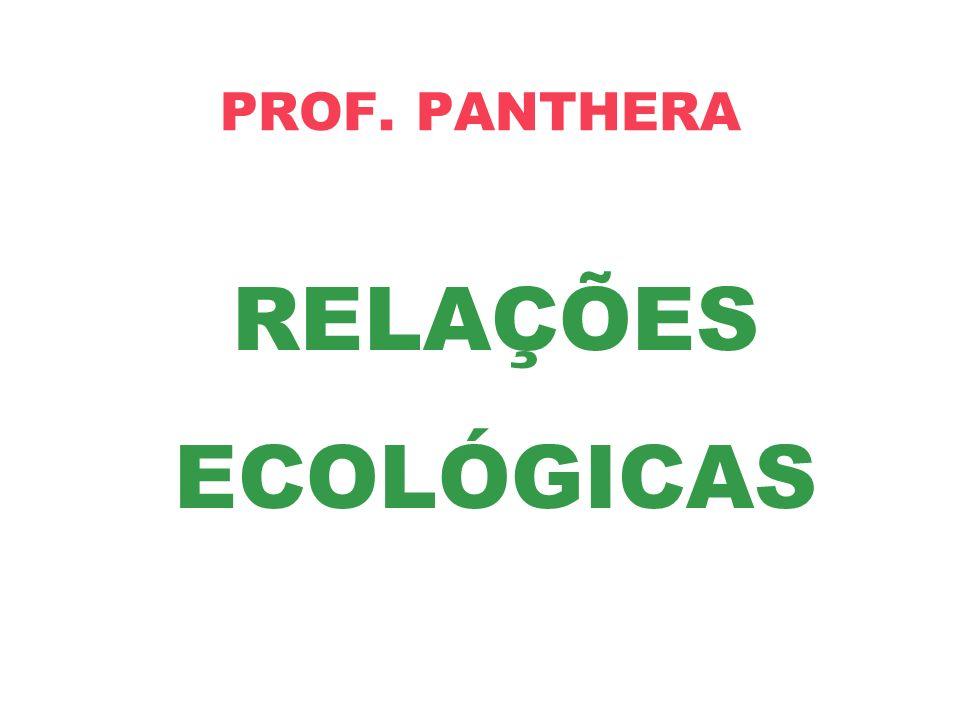 RELAÇÕES ECOLÓGICAS PROF. PANTHERA