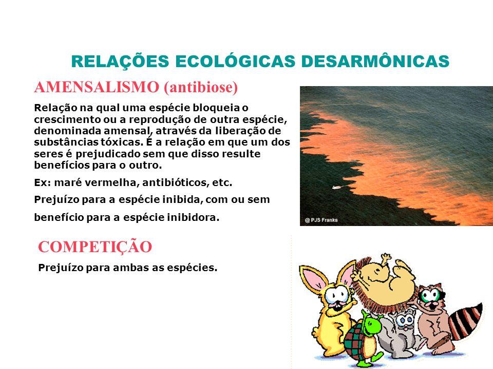 RELAÇÕES ECOLÓGICAS DESARMÔNICAS AMENSALISMO (antibiose) Relação na qual uma espécie bloqueia o crescimento ou a reprodução de outra espécie, denomina