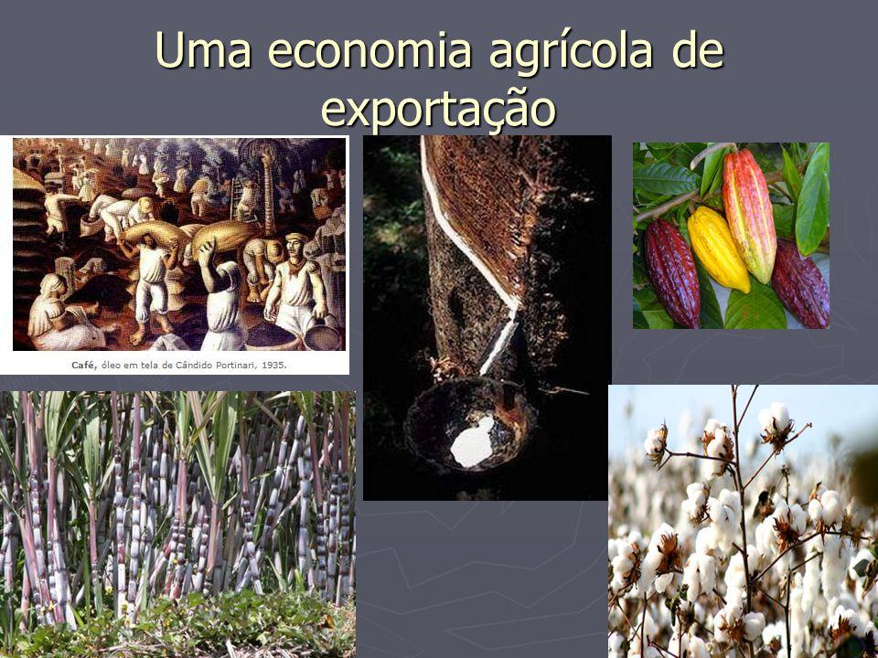 Uma economia agrícola de exportação