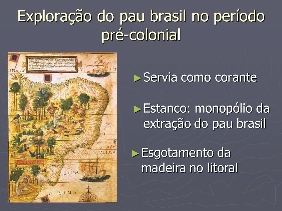 Exploração do pau brasil no período pré-colonial Servia como corante Servia como corante Estanco: monopólio da extração do pau brasil Estanco: monopól
