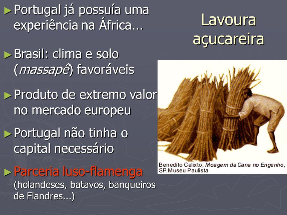 Lavoura açucareira Portugal já possuía uma experiência na África... Portugal já possuía uma experiência na África... Brasil: clima e solo (massapê) fa