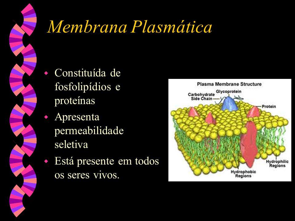 Membrana Plasmática w Constituída de fosfolipídios e proteínas w Apresenta permeabilidade seletiva w Está presente em todos os seres vivos.