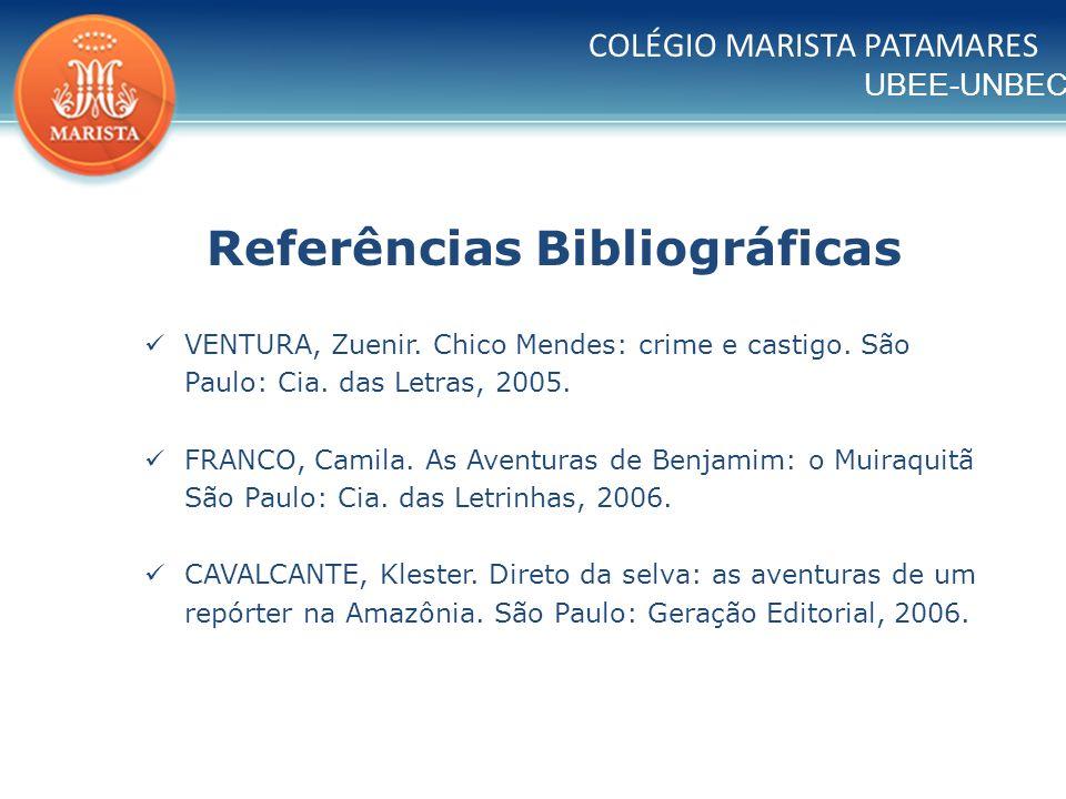 UBEE-UNBEC COLÉGIO MARISTA PATAMARES Referências Bibliográficas VENTURA, Zuenir. Chico Mendes: crime e castigo. São Paulo: Cia. das Letras, 2005. FRAN