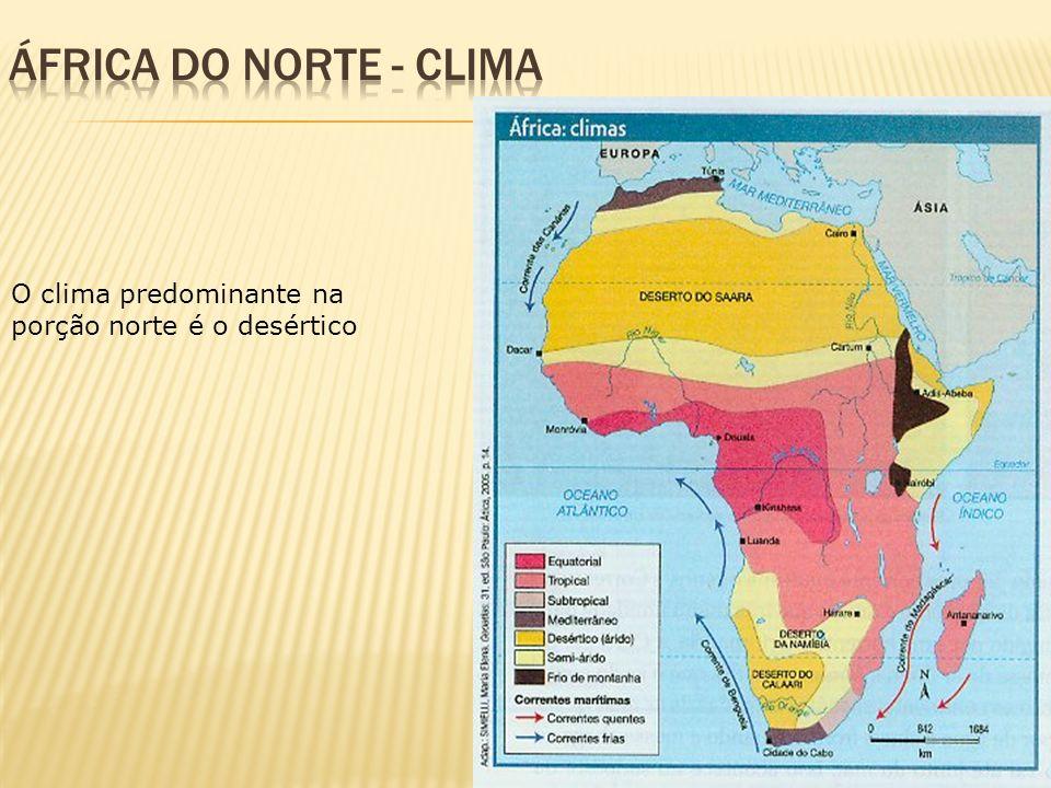 O clima predominante na porção norte é o desértico