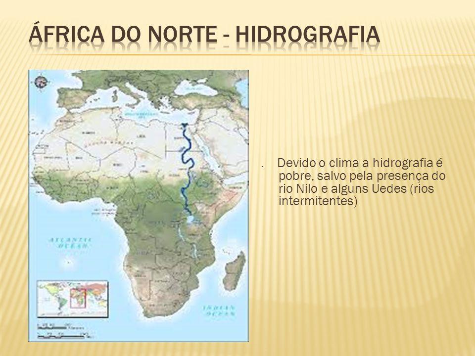 . Devido o clima a hidrografia é pobre, salvo pela presença do rio Nilo e alguns Uedes (rios intermitentes)