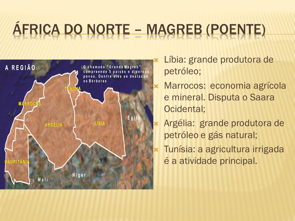 Líbia: grande produtora de petróleo; Marrocos: economia agrícola e mineral. Disputa o Saara Ocidental; Argélia: grande produtora de petróleo e gás nat