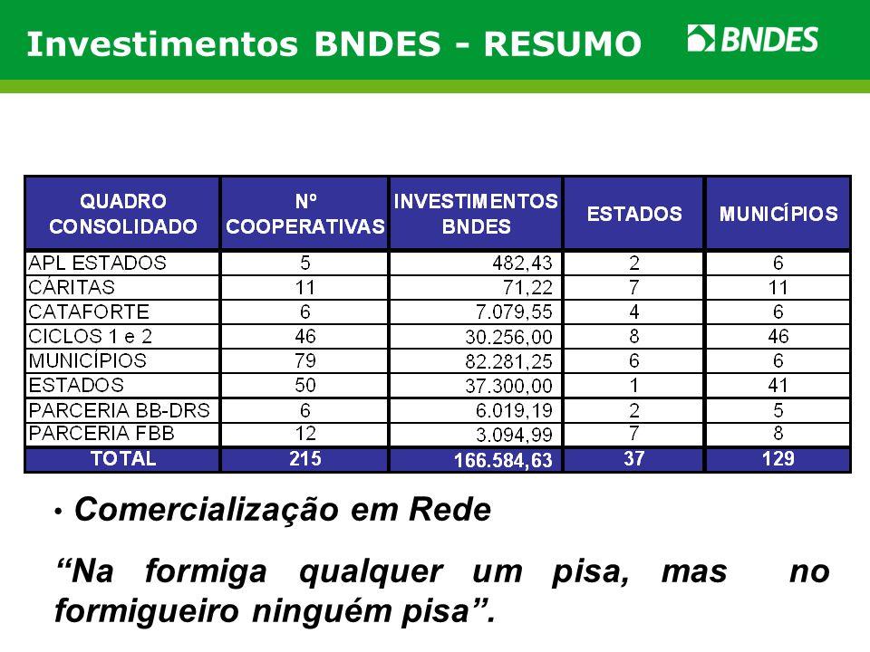 Investimentos BNDES - RESUMO Comercialização em Rede Na formiga qualquer um pisa, mas no formigueiro ninguém pisa. Catador Alex