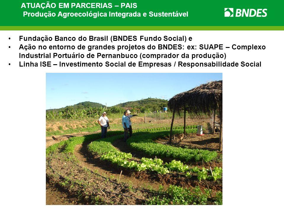 ATUAÇÃO EM PARCERIAS – PAIS Produção Agroecológica Integrada e Sustentável Fundação Banco do Brasil (BNDES Fundo Social) e Ação no entorno de grandes