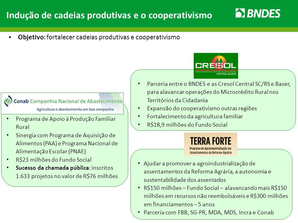 Indução de cadeias produtivas e o cooperativismo Objetivo: fortalecer cadeias produtivas e cooperativismo Programa de Apoio à Produção Familiar Rural