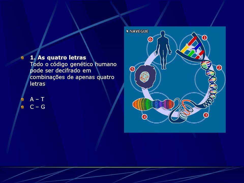 1. As quatro letras Todo o código genético humano pode ser decifrado em combinações de apenas quatro letras A – T C – G