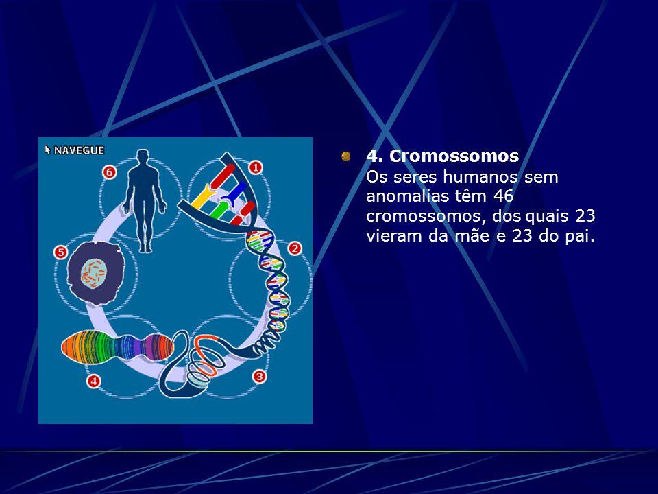 4. Cromossomos Os seres humanos sem anomalias têm 46 cromossomos, dos quais 23 vieram da mãe e 23 do pai.