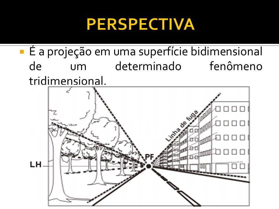 É a projeção em uma superfície bidimensional de um determinado fenômeno tridimensional.