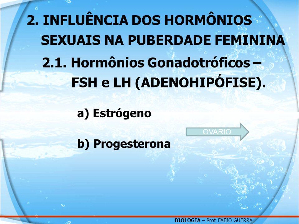BIOLOGIA – Prof. FÁBIO GUERRA 2. INFLUÊNCIA DOS HORMÔNIOS SEXUAIS NA PUBERDADE FEMININA 2.1. Hormônios Gonadotróficos – FSH e LH (ADENOHIPÓFISE). a) E