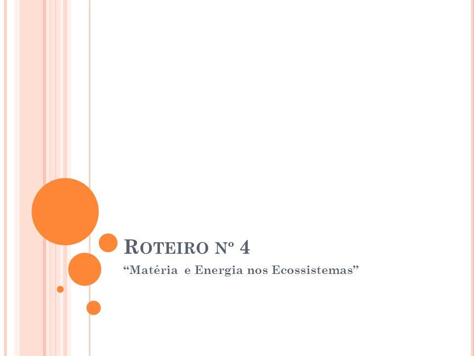 R OTEIRO Nº 4 Matéria e Energia nos Ecossistemas