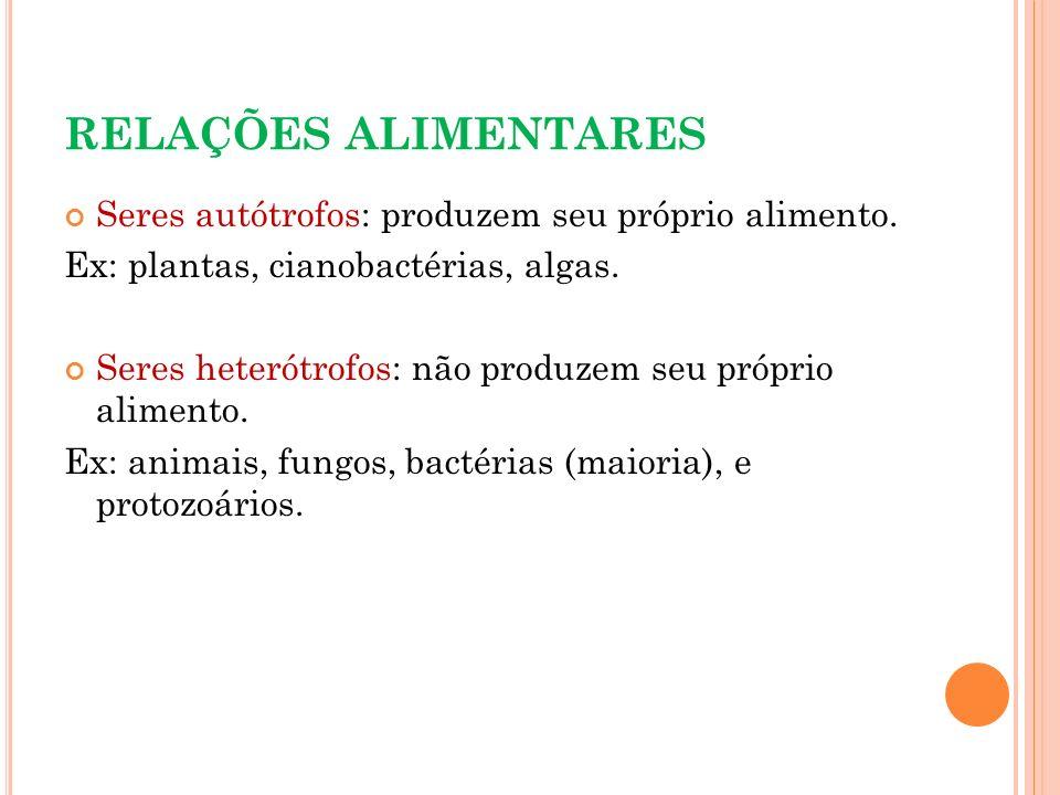 RELAÇÕES ALIMENTARES Seres autótrofos: produzem seu próprio alimento. Ex: plantas, cianobactérias, algas. Seres heterótrofos: não produzem seu próprio