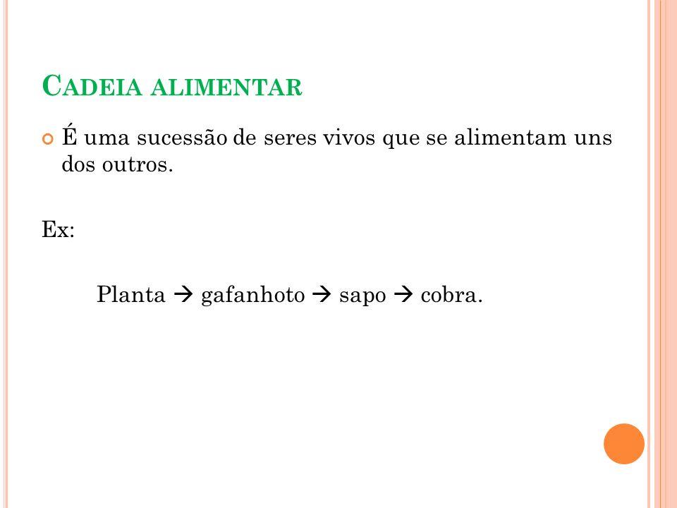 C ADEIA ALIMENTAR É uma sucessão de seres vivos que se alimentam uns dos outros. Ex: Planta gafanhoto sapo cobra.