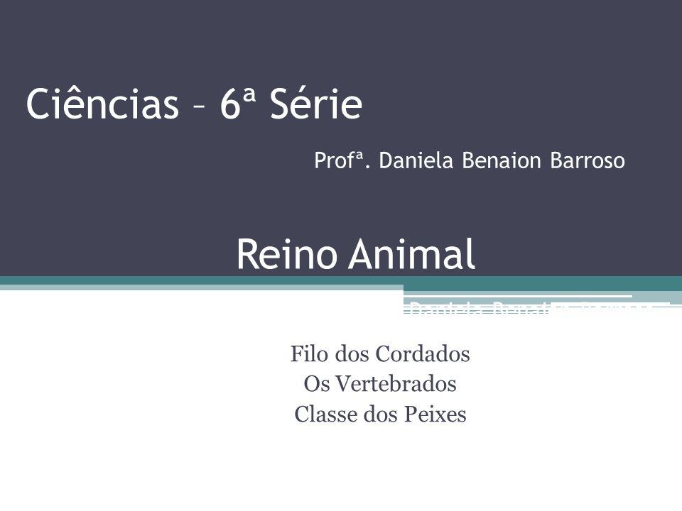 Ciências – 6ª Série Profª. Daniela Benaion Barroso Filo dos Cordados Os Vertebrados Classe dos Peixes Reino Animal Profª. Daniela Benaion Barroso
