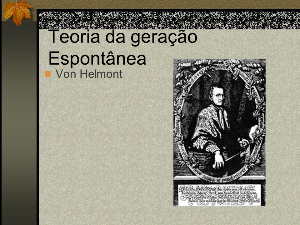 Teoria da geração Espontânea Von Helmont