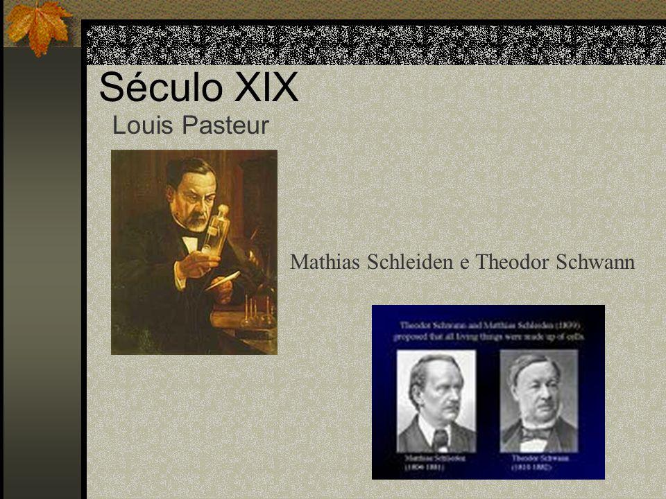 Século XIX Louis Pasteur Mathias Schleiden e Theodor Schwann