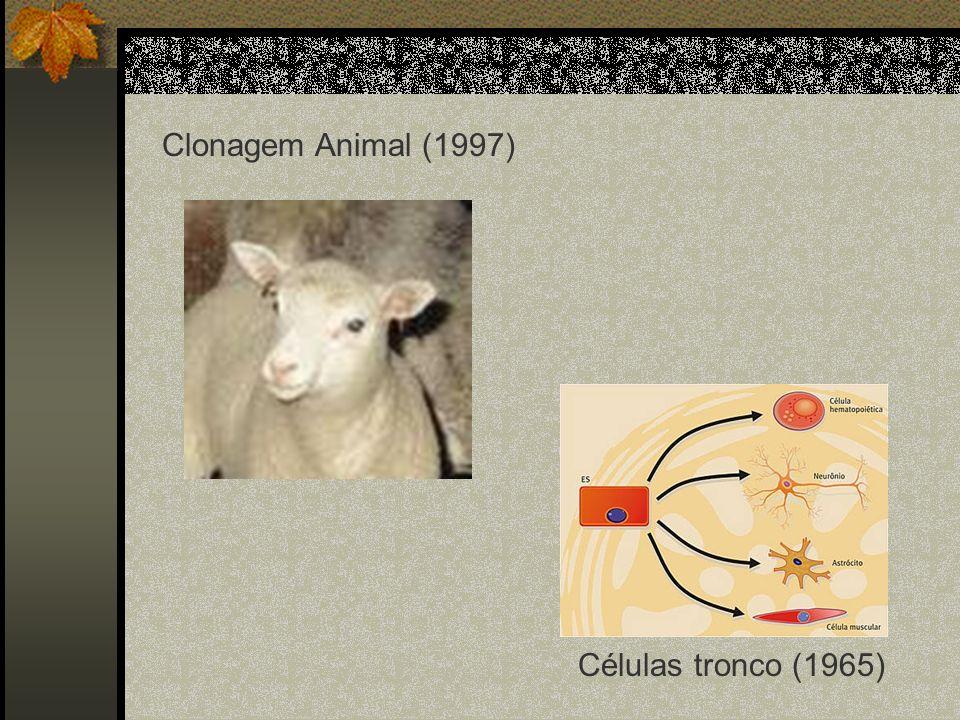 Clonagem Animal (1997) Células tronco (1965)