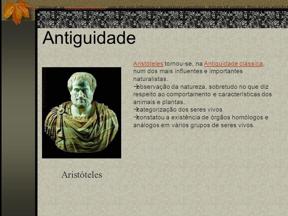 Antiguidade Aristóteles Arist ó telesArist ó teles tornou-se, na Antiguidade cl á ssica, num dos mais influentes e importantes naturalistas. Atingiu t