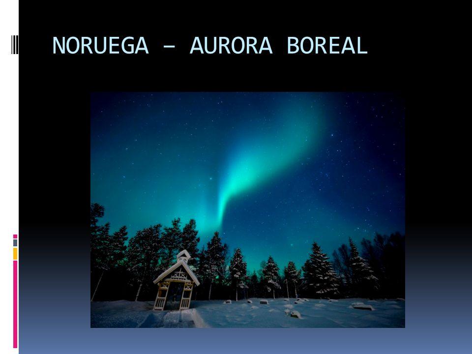 É a Europa Nórdica, são regiões de climas frios, populações de origem germânica, altíssimo nível de vida. Noruega Suécia Finlândia Dinamarca Islândia