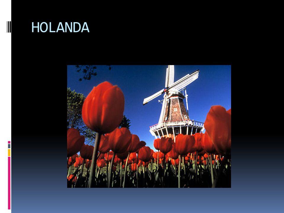Constituem-se de antigas potências coloniais, altamente industrializados e organizados socialmente: Reino Unido Irlanda Holanda Bélgica Luxemburgo Fra