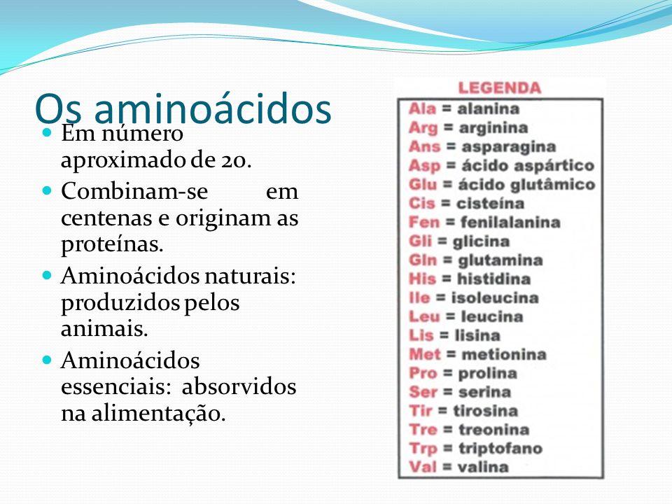 Os aminoácidos Em número aproximado de 20. Combinam-se em centenas e originam as proteínas. Aminoácidos naturais: produzidos pelos animais. Aminoácido
