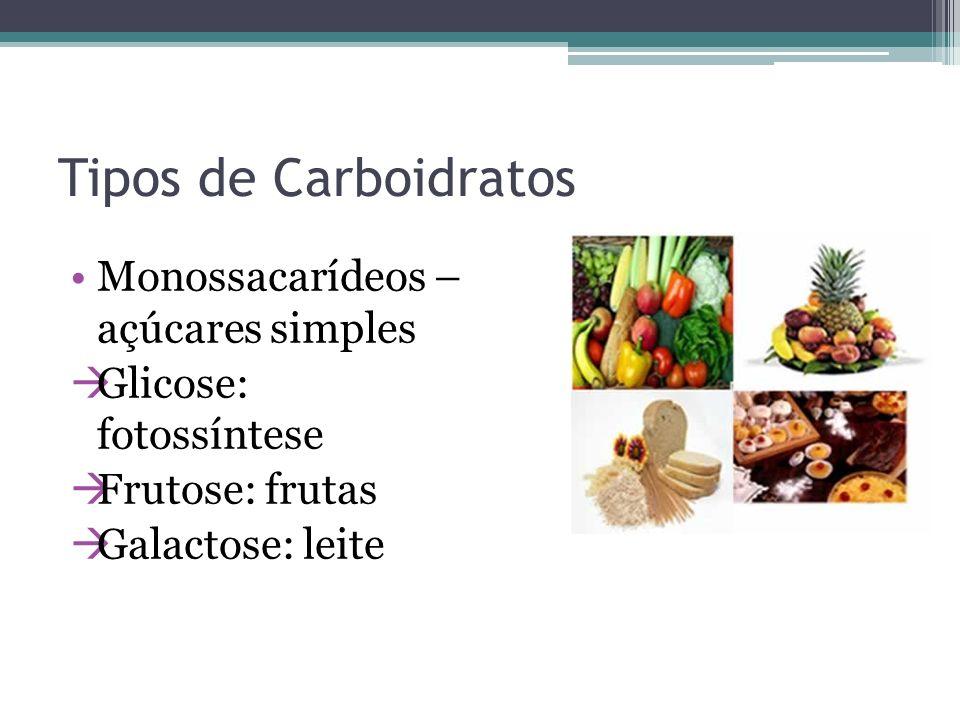 Tipos de Carboidratos Monossacarídeos – açúcares simples Glicose: fotossíntese Frutose: frutas Galactose: leite