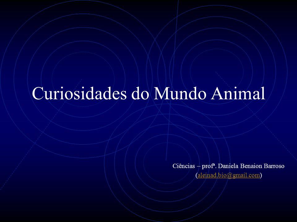 Curiosidades do Mundo Animal Ciências – profª.