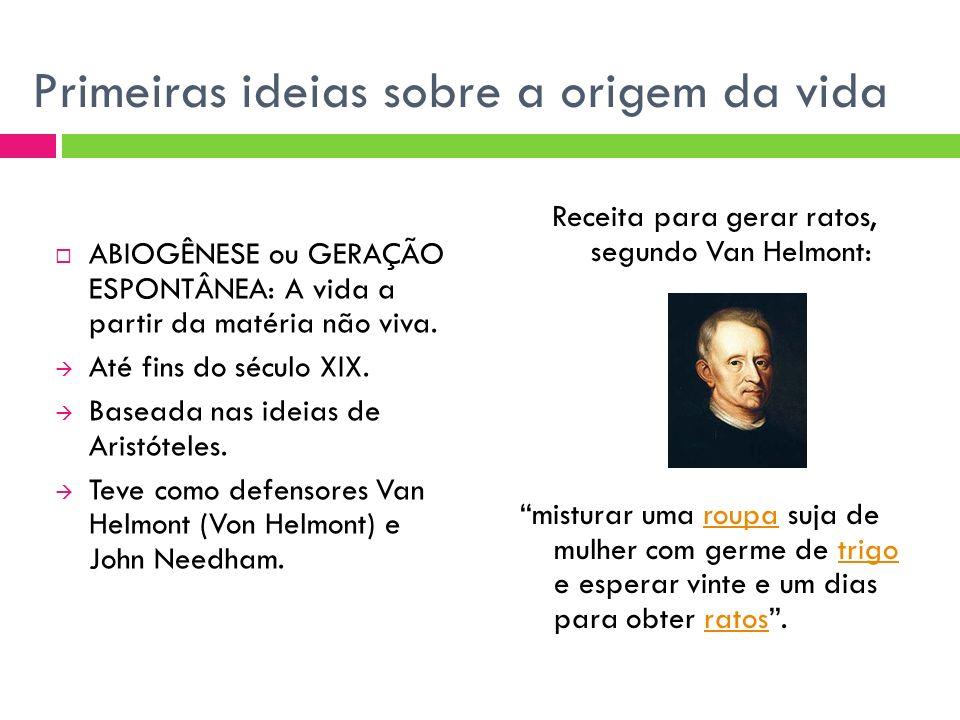 Primeiras ideias sobre a origem da vida ABIOGÊNESE ou GERAÇÃO ESPONTÂNEA: A vida a partir da matéria não viva. Até fins do século XIX. Baseada nas ide