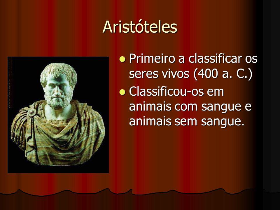 Aristóteles Primeiro a classificar os seres vivos (400 a. C.) Primeiro a classificar os seres vivos (400 a. C.) Classificou-os em animais com sangue e