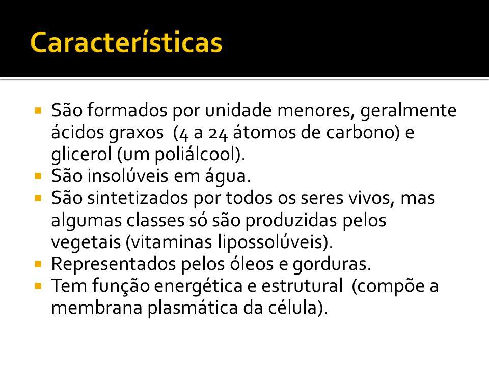 São formados por unidade menores, geralmente ácidos graxos (4 a 24 átomos de carbono) e glicerol (um poliálcool).