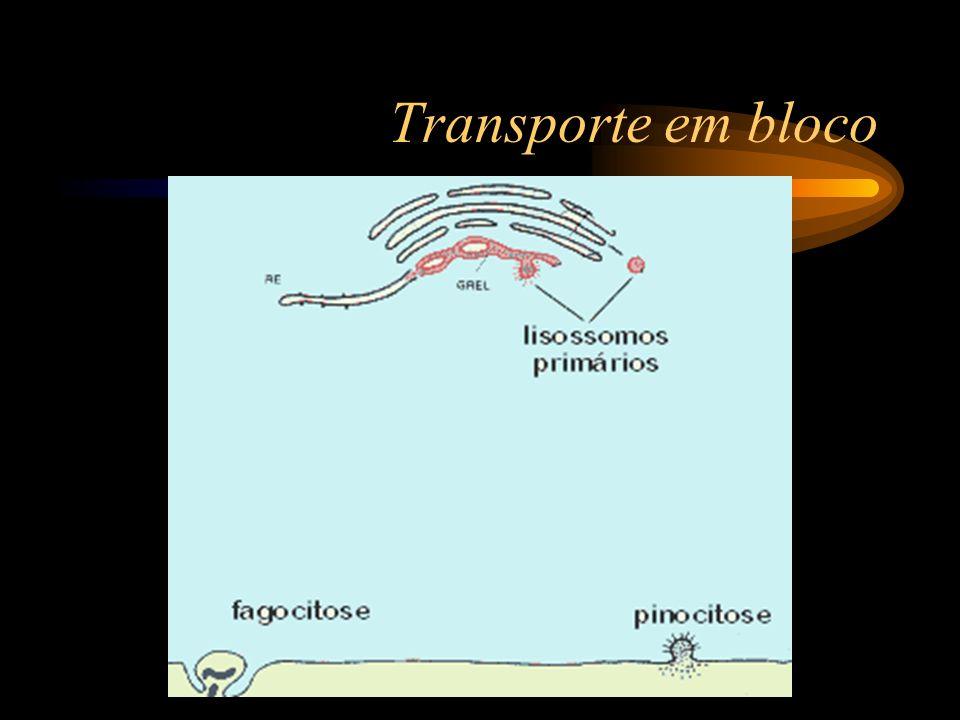 Transporte em bloco