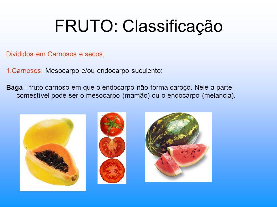 FRUTO: Classificação Divididos em Carnosos e secos; 1.Carnosos: Mesocarpo e/ou endocarpo suculento: Baga - fruto carnoso em que o endocarpo não forma
