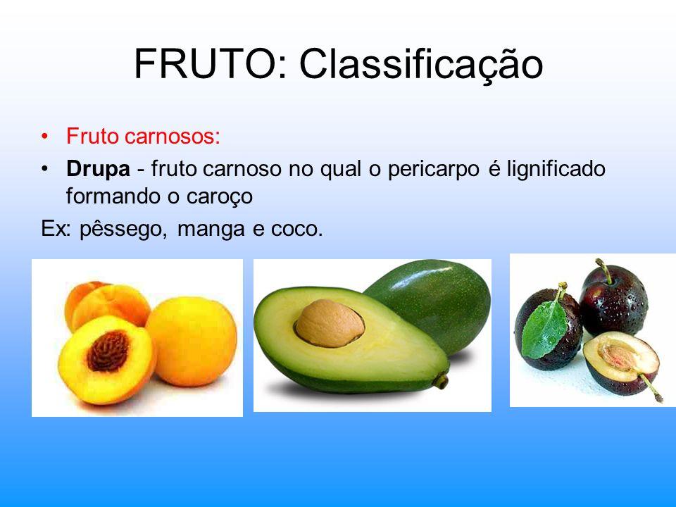 FRUTO: Classificação Fruto carnosos: Drupa - fruto carnoso no qual o pericarpo é lignificado formando o caroço Ex: pêssego, manga e coco.