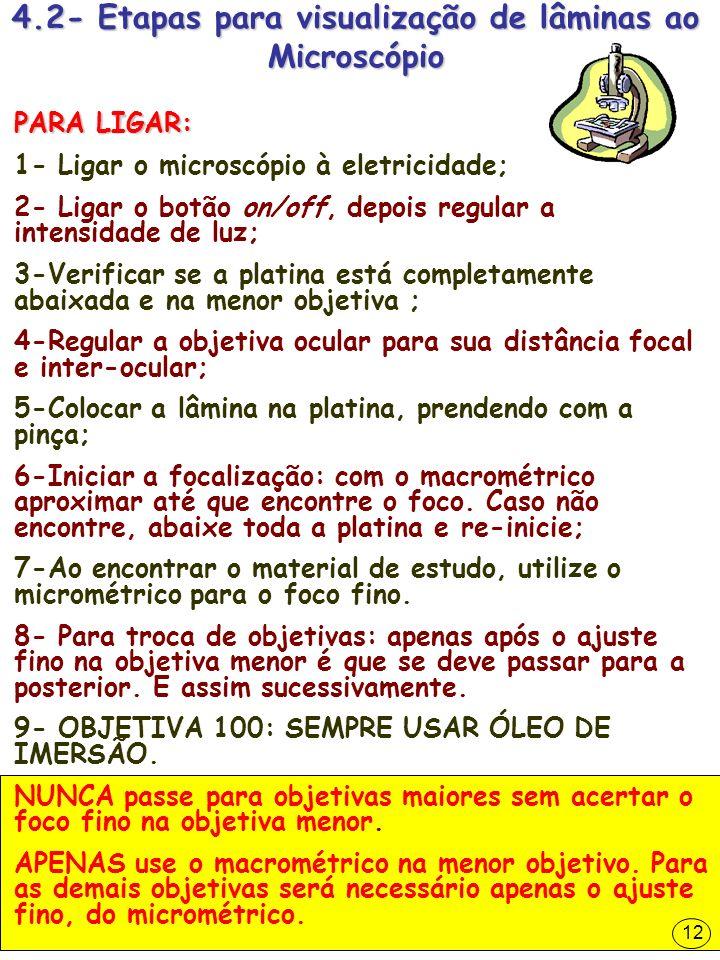 4.2- Etapas para visualização de lâminas ao Microscópio PARA LIGAR: 1- Ligar o microscópio à eletricidade; 2- Ligar o botão on/off, depois regular a i